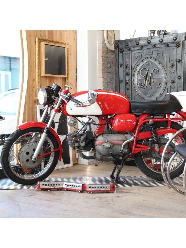 Aermacchi Harley Davidson, Ala Verde