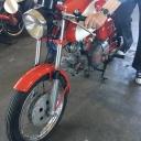 Aermacchi Harley Davidson, Ala Verde 2